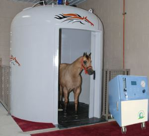 Oxygen Concentrator For Veterinary Use